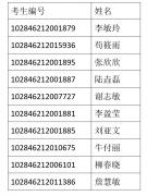 南京大学2016年汉语国际教育专业硕士学位研究生拟录取名单